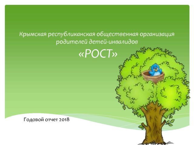 Публичный годовой отчёт за 2018 год